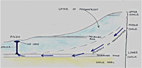 Diagram of North-South cross section through the chalk layers under Thriplow.  This shows the start of the development of a pingo   The vertical scale has been exaggerated for clarity.